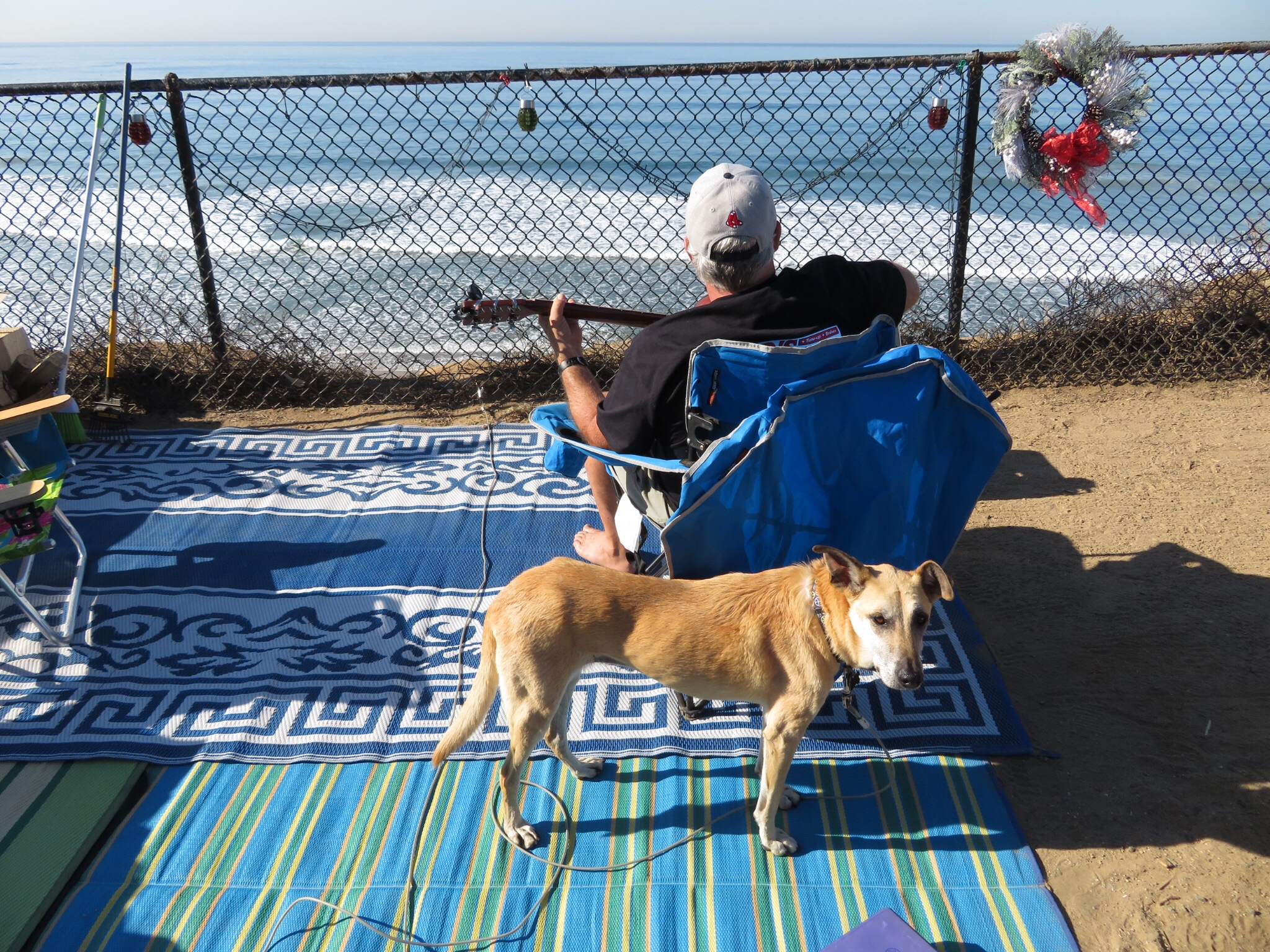 Dog Days Of Carlsbad Heart On The Wing